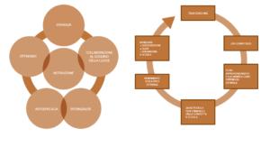 Modelli generali di psicologia positiva utilizzata nell'intervento di coaching-formazione