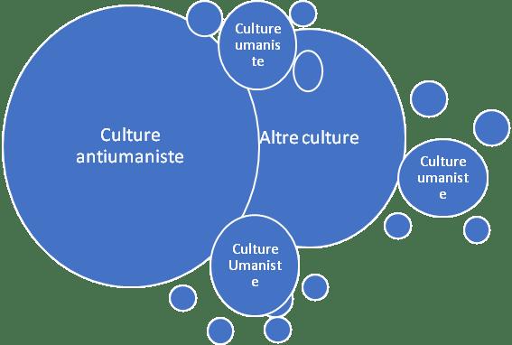 culture 03
